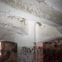 Betonové sloupoví v suterénu budovy