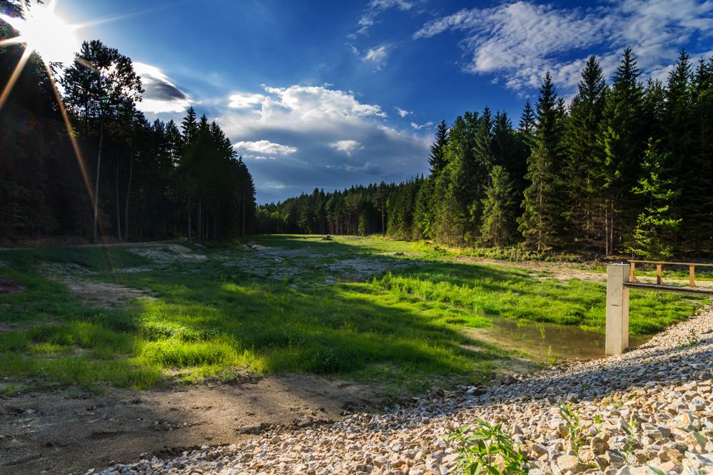 Karvašinský rybník na začátku prázdnin ´14