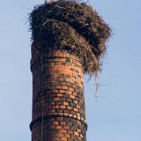 Zde je čapí hnízdo viditelně ke škodě...